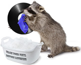 Мойка виниловых дисков
