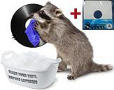 Мойка виниловых дисков + антистатический конверт